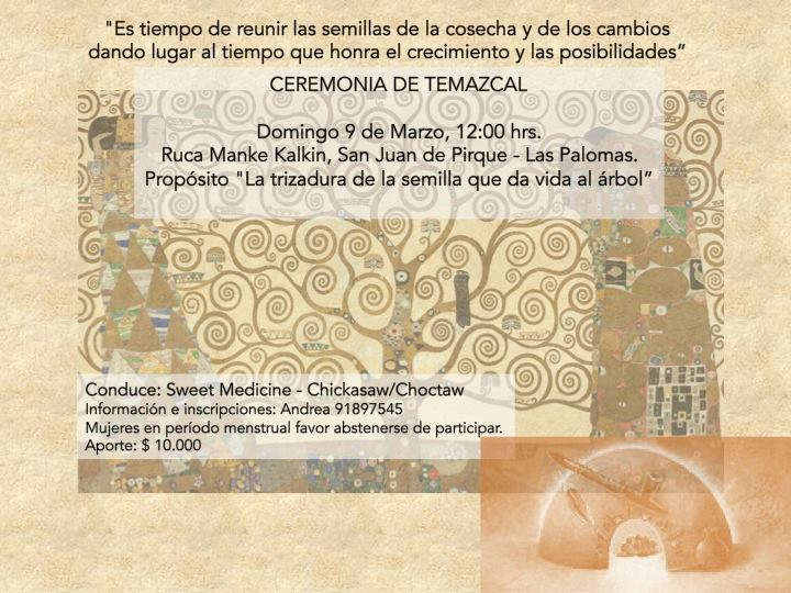 chile-flyer